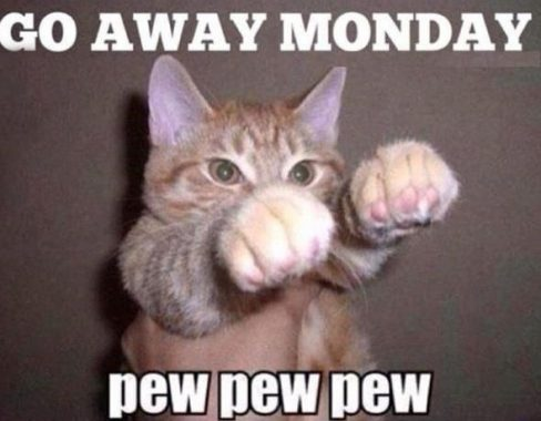 Make Your Monday A Funday With These Funny Monday Memes Enjoy